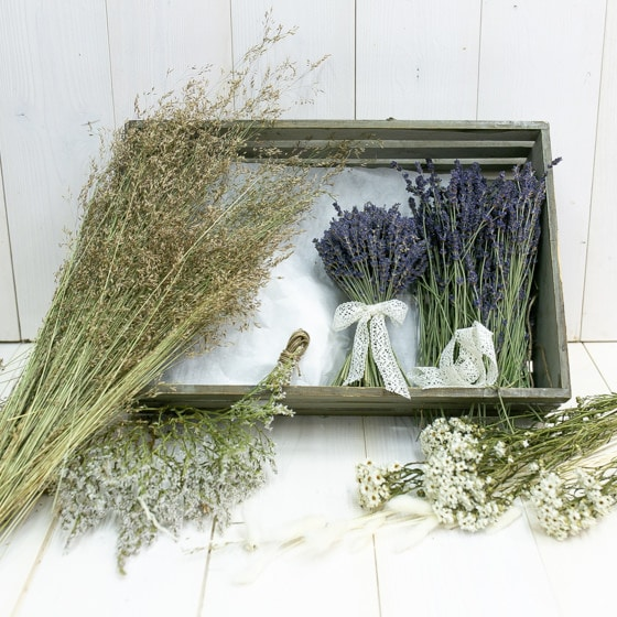 Dry_Flowers_DIY_Box_stehstrauss_Lavendel (2)