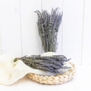 Dry_Flowers_Lavendel (2)