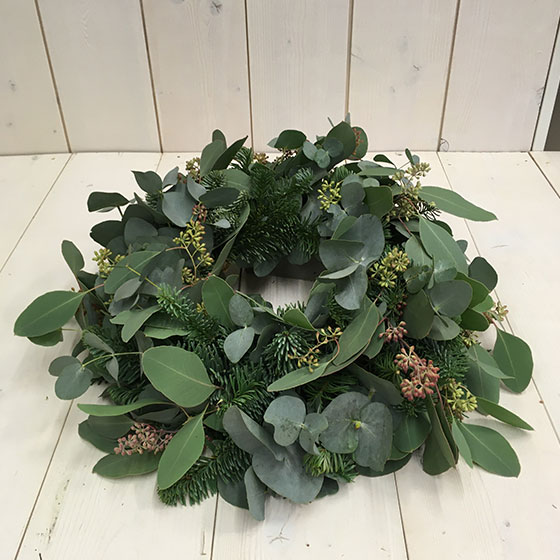 Adventkranz-Eucalyptus